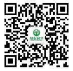 上海绿植租赁公司